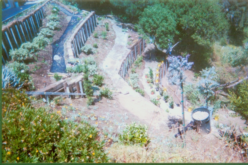 hillside-4